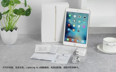 苹果 iPad mini 4金色 配件图