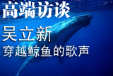 吴立新:穿越鲸鱼的歌声