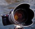索尼70-400G镜头首测