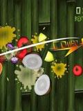 《Fruit Ninja 水果忍者》很消遣很发泄