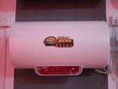 厨房时尚色彩 家嘉乐电器展会聚焦
