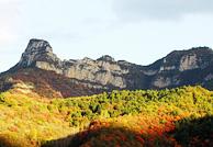 秋天风景拍摄技巧