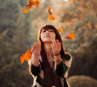 秋浓落叶归