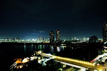 台场公园夜景