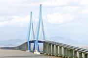 海康威视舟山大桥项目