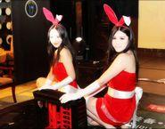 兔女郎展示机箱