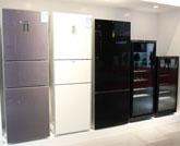 西门子进口大容积两门冰箱