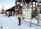 Fox Diary of Hokkaido