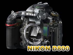 大师评器材:尼康D800