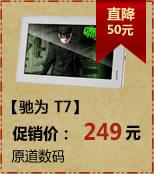 驰为 T7(8GB)