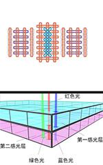 对焦点和测光系统详解