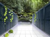 数据中心采用植物冷却