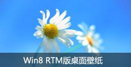 小清新风格 Win8 RTM版桌面壁纸泄露
