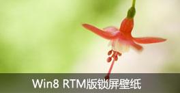 Win8 RTM锁屏壁纸泄露 最终版本号9200