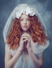 《新娘与寡妇》
