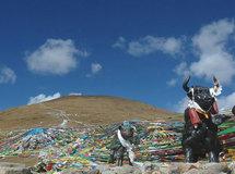 平安善领西藏慈善之旅