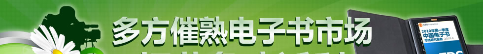 中国电子书市场买方/卖方策略研究