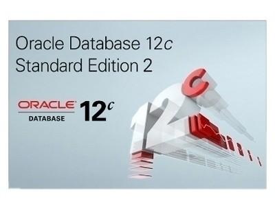 Oracle Database 12c 标准版