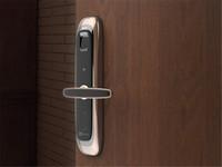 萤石 DL21S家用智能标准门锁报价2499
