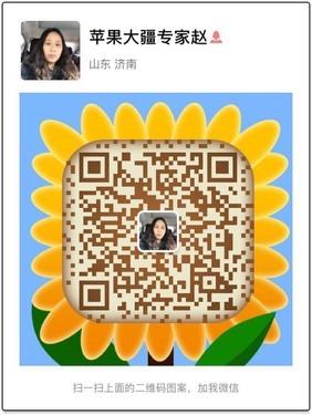 哈曼卡顿Go+ play蓝牙音箱济南2299元