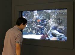 全球首款56吋裸眼3D电视亮相