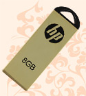 HP V225w 8GB