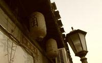 2012.1.09 寻找记忆中的冬日