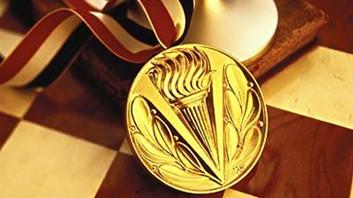 2010年3月获金牌SaaS服务厂商