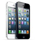 极速奖(3名):Apple Iphone 5手机