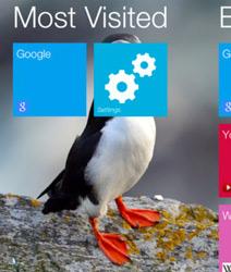 【软件】Flash 浏览器