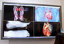 优派医疗会诊显示器VM6080C8