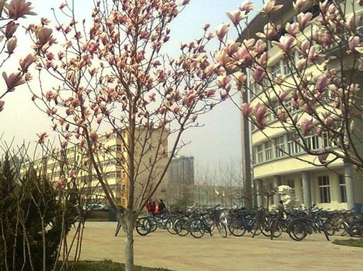 北京服装学院信息中心IT服务台建设